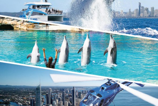 Whale Watching, Sea World and Helicopter Flight